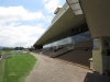 Scottsville Racecourse - Grandstands