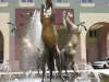 Scottsville Racecourse -  Horse Fountain - Surrey Road - Golden Horse statues (1)