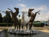 Scottsville Racecourse -  Horse Fountain - Surrey Road - Golden Horse statues (2)