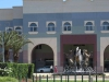Scottsville Racecourse -  Horse Fountain - Surrey Road - Golden Horse statues (5)