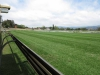 Scottsville Racecourse - Track Views  Surrey Road  (5)