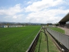Scottsville Racecourse - Track Views  Surrey Road  (6)