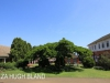 St Johns College Prep School (2)