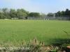 St Johns School sports field)
