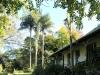 The Cedars  -  Front facade (7).