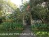 The Cedars  - gardens (4).