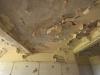 PMB - Old St Annes Hospital - Loop Street - Peeling paint (2)