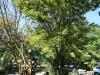 natal-parks-board-ezemvelo-duncan-mckenzie-drive-statue-1
