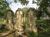Voortrekker Cemetery East graves Alfred, Mary and Leonard Line
