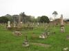 Voortrekker Cemetery East grave views (4)