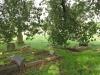 Voortrekker Cemetery East grave  views