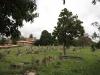Voortrekker Cemetery West - General views (10)