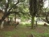 Voortrekker Cemetery West - General views (2)