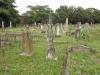 Voortrekker Cemetery West - General views (4)