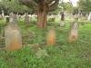 Voortrekker Cemetery West - Graves Fitzsimon family