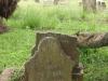 Voortrekker Cemetery West - Grave Joe Brown