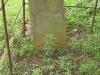 Voortrekker Cemetery West - Grave John .... of Richmond 1871