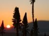 Dusk to Dawn - Piet Retief sunset (5)