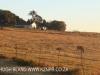 Dusk to Dawn - farm vistas (1)