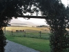Dusk to Dawn - farm vistas (4)