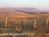 Dusk to Dawn - gates and entrance road) (3)