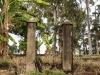 Maris Stella - garden gate