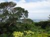 Pumula Beach Resort - Garden outlook (3)