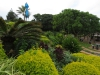 Pumula Beach Resort - Gardens (4)