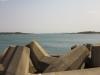 richards-bay-alkanstrand-harbour-mouth-s28-48-374-e-32-05-56-elev-7m-2