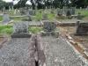 Richmond Cemetery - Grave -  Doreen Milne & Willem Jurgen