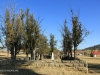 Rorkes Drift British Cemetery in stockade (3)
