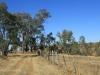Rorkes Drift British Cemetery north of drift 28.23.29 S 30.36.00 E (1)