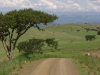 biggarsberg-road-to-rorkes-drift-1