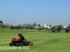 Greyville Royal Durban Golf Club fairways (13)