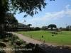 Greyville Royal Durban Golf Club fairways (3).