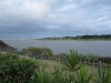 saint-lucia-estuary-mouth-1
