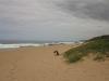 blythedale-beach-s29-22-17-e-31-21-8