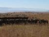 Schuinshooghte Military Cemetery - West - 1881 - Anglo Boer War - view towards Inkwelo & Majuba (1)