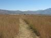 Schuinshooghte Military Cemetery - West - 1881 - Anglo Boer War views towards Inkwelo (2)