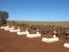 Schuinshoogte Military Cemetery (East) - Anglo Boer War (1899 -1900) - Grave  views (5)