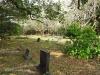 Scottburgh Cemetery grave Benjamin Comesall
