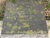 Scottburgh Cemetery grave Florence Cope