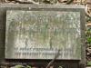 Scottburgh Cemetery grave Ralph Meyers.