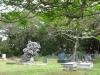 Scottburgh Cemetery grave Van Staden