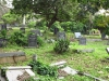 Scottburgh Cemetery grave Wepener and others