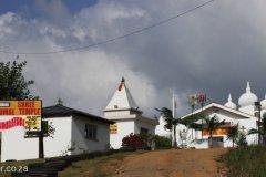 Shakaskraal