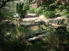 shongweni-dam-base-of-wall-s-29-51-43-e-30-43-09-elev-286m-41