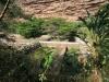 shongweni-dam-base-of-wall-s-29-51-43-e-30-43-09-elev-286m-44
