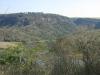 shongweni-dam-forest-roads-2