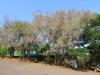shongweni-dam-umzinyathi-canoe-club-s-29-51-24-e-30-43-29-elev-314m-5